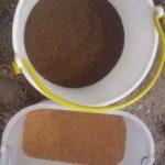 semi di facelia e trifoglio incarnato